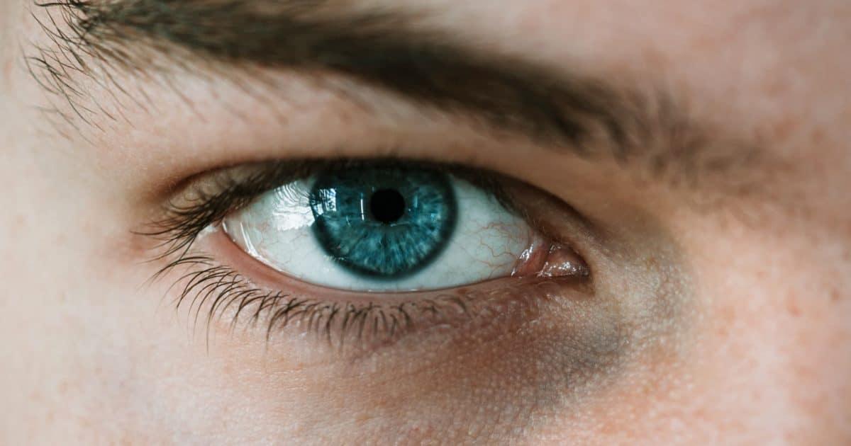 Monatslinsen, Monatskontaktlinsen